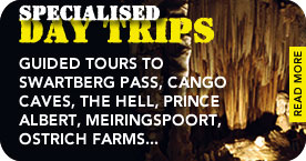 Read more about our tours